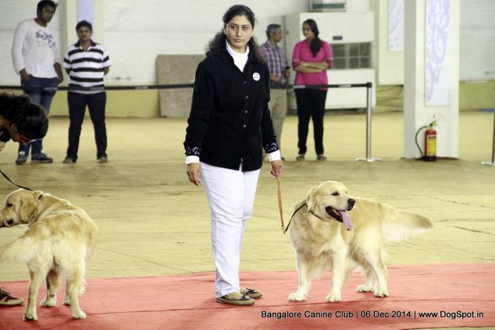 handling by ladies competition,sw-138,, Bangalore Canine Club 2014, DogSpot.in
