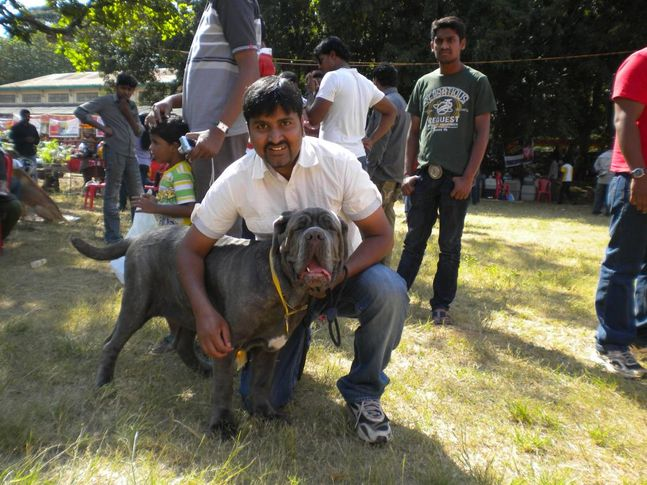 Best in Puppy Class, Bangalore Canine Club Dog Show 21st Nov 2009, DogSpot.in