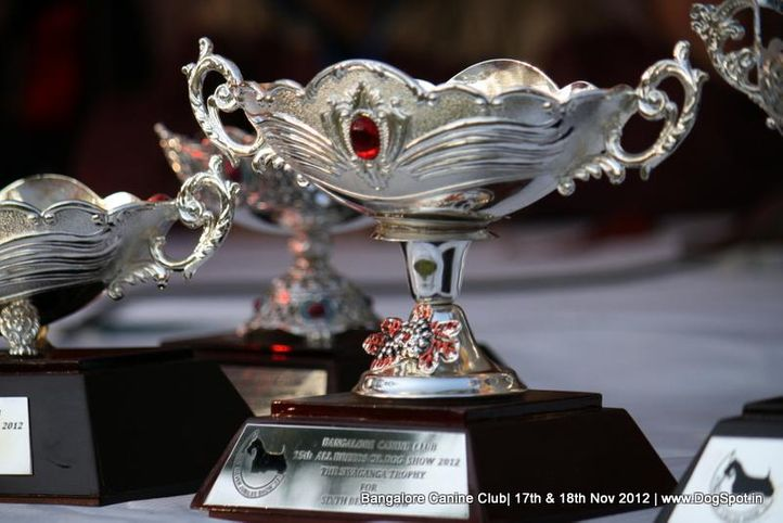 show trophy,sw-69,, Bangalore Dog Show 2012 , DogSpot.in
