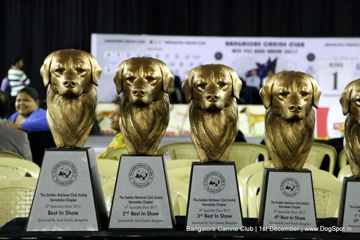 day - 1,sw-202,trophies,, Bangalore Dog Show 2017, DogSpot.in