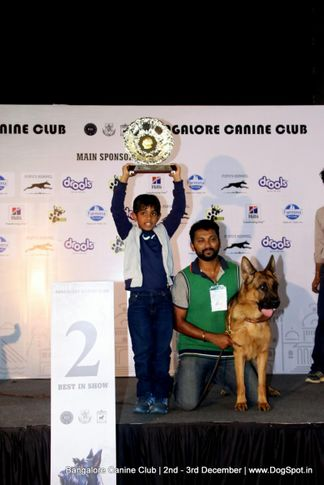 kci show lineup 2,sw-202,, Bangalore Dog Show 2017, DogSpot.in