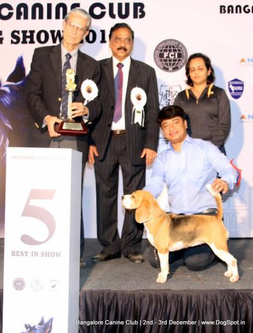 fci show lineup 2,sw-202,, Bangalore Dog Show 2017, DogSpot.in