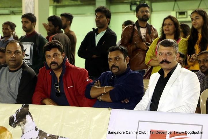 day - 1,sw-202,, Bangalore Dog Show 2017, DogSpot.in