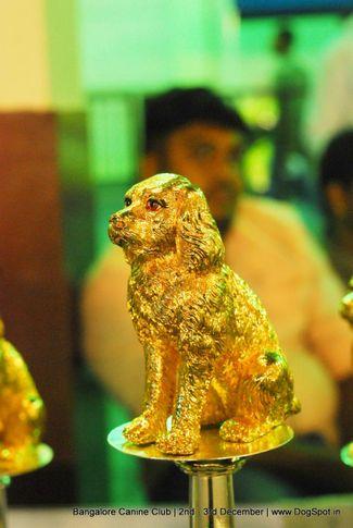 bangalore dog show 2017, Bangalore Dog Show 2017, DogSpot.in