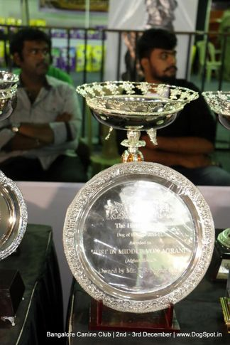 sw-202,trophies,, Bangalore Dog Show 2017, DogSpot.in