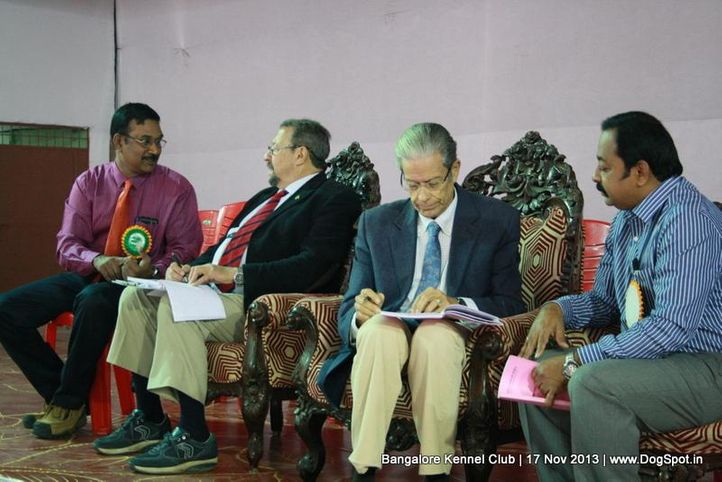judges,ring steward,sw-102,, Bangalore Dog Show , DogSpot.in