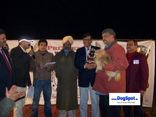 Lineup,, Bareilly Dog Show 2010, DogSpot.in