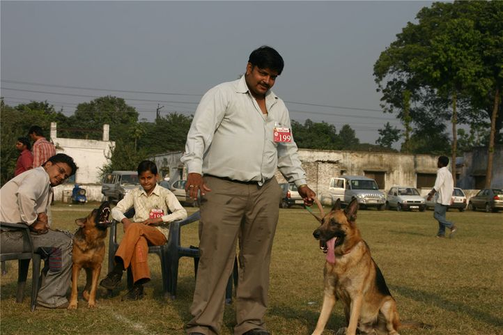 people,gsd,, Bareilly Dog Show, DogSpot.in