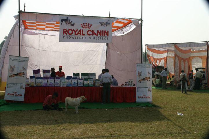 stalls,ground,, Bareilly Dog Show, DogSpot.in