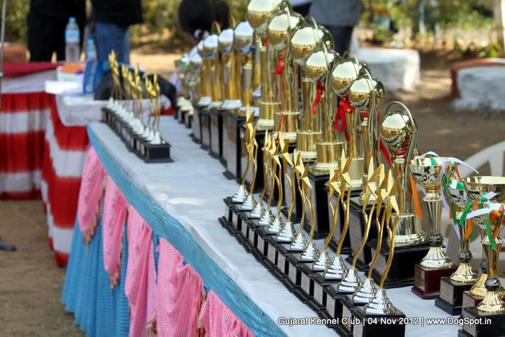 sw-64, sw-64,trophies,, Baroda Dog Show 4th Nov 2012, DogSpot.in