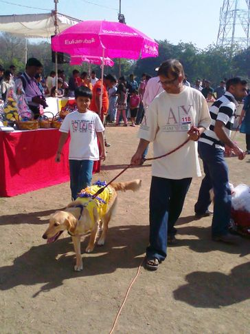 all breed dog show, All Breed Dog Show, DogSpot.in
