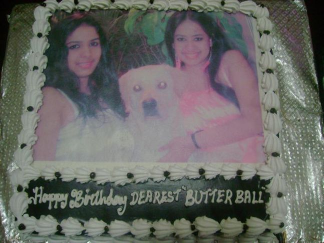 butterball bday fotos, ButterBall B'day fotos, DogSpot.in