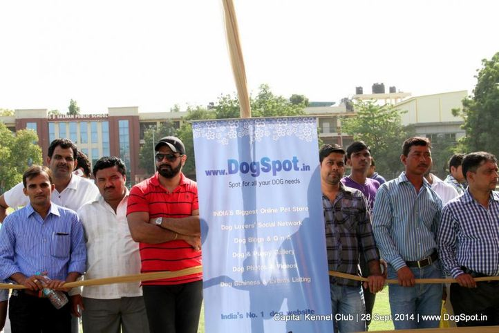 ground,sw-128,, Capital Kennel Club - 2014 , DogSpot.in