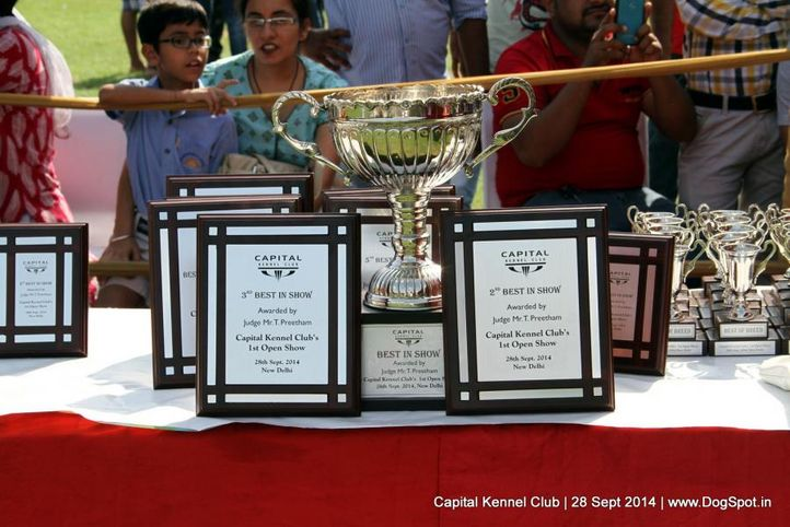 sw-128,trophy,, Capital Kennel Club - 2014 , DogSpot.in