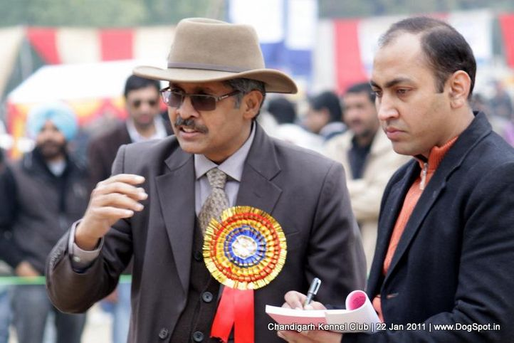 judges,people,ring steward,sw-50,, Chandigarh 2012, DogSpot.in