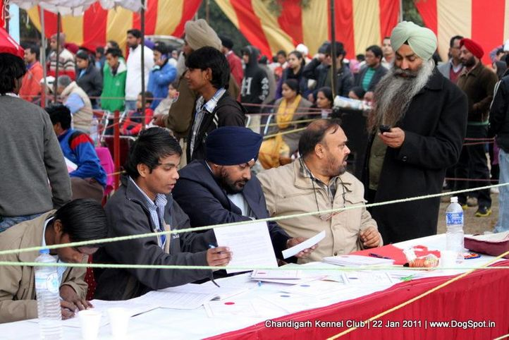 people,sw-50,table,, Chandigarh 2012, DogSpot.in