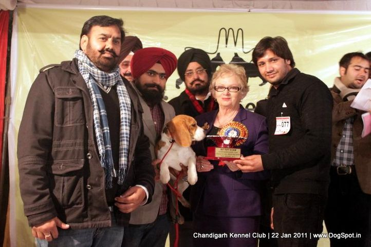bis,sw-50,, Chandigarh 2012, DogSpot.in