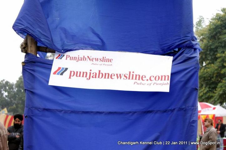 ground,sw-50,, Chandigarh 2012, DogSpot.in