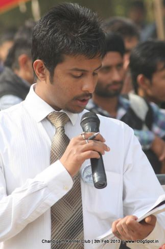 ring steward,sw-75,, Chandigarh Dog Show 2013, DogSpot.in