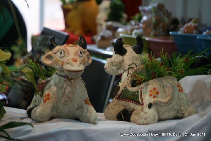 akriti,, Day 1 IIPTF 2011, DogSpot.in