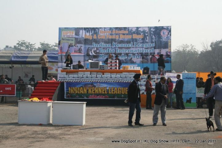 all breed championship,stage,, Day 2 IKL Show IIPTF, DogSpot.in