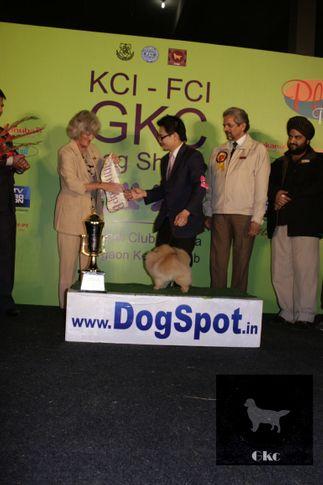 6thFCI,Day2,LineupFCI,, Day2 LineUp FCI GKC KCI, DogSpot.in