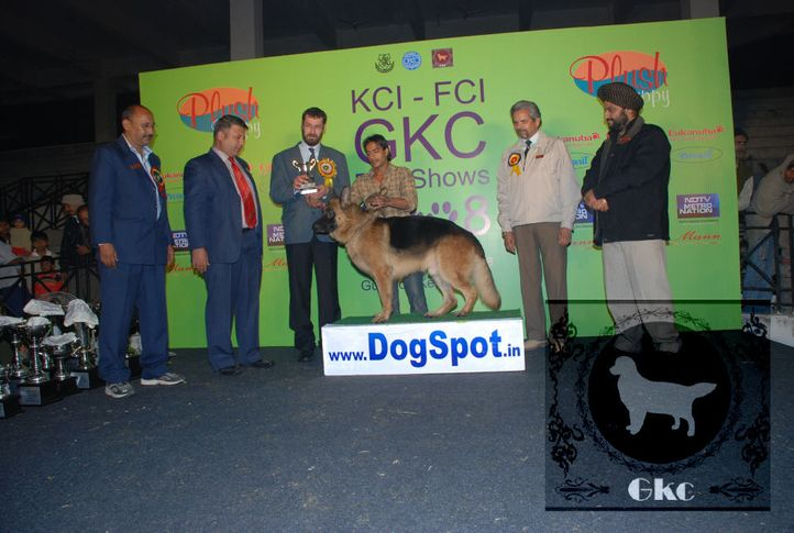 8thGKC,8thGKCLineup,day2,LineupDay2,, Day2 LineUp FCI GKC KCI, DogSpot.in
