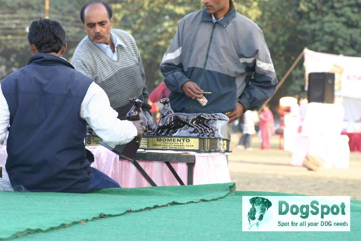 ground,, Dehradun Dog Show 2008, DogSpot.in
