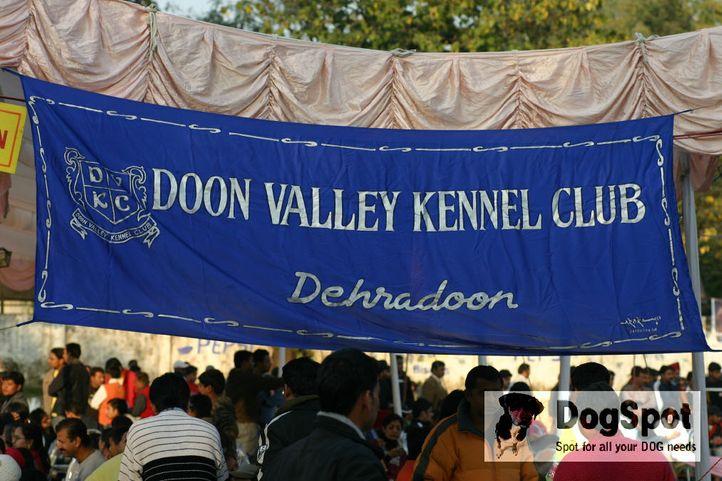 ground,, Dehradun Dog Show 2008, DogSpot.in