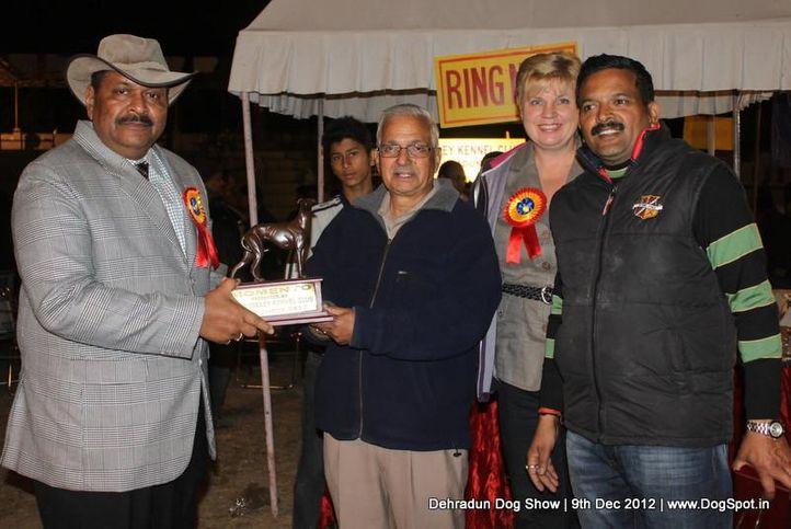 judge,sw-73,, Dehradun Dog Show 2012, DogSpot.in