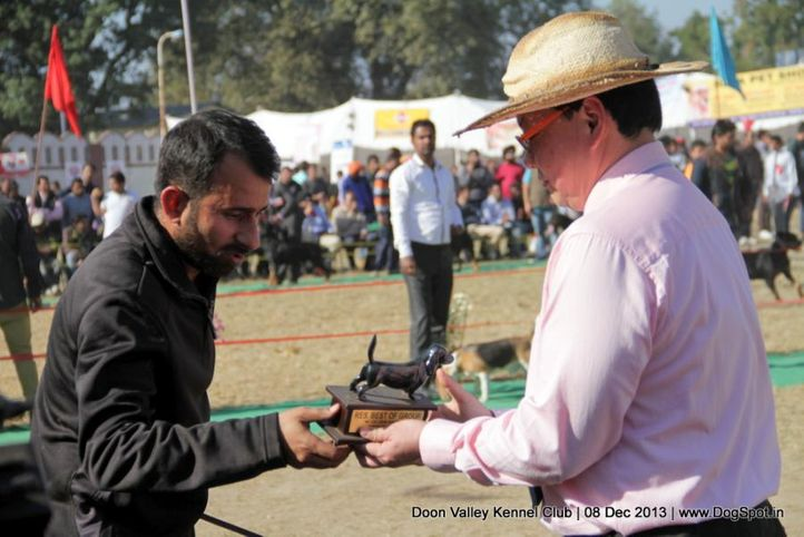 people,sw-103,, Dehradun Dog Show 2013, DogSpot.in