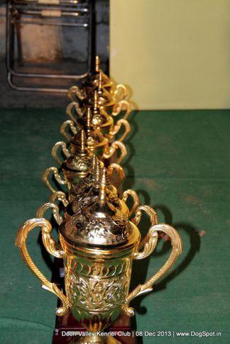 sw-103,trophy,, Dehradun Dog Show 2013, DogSpot.in