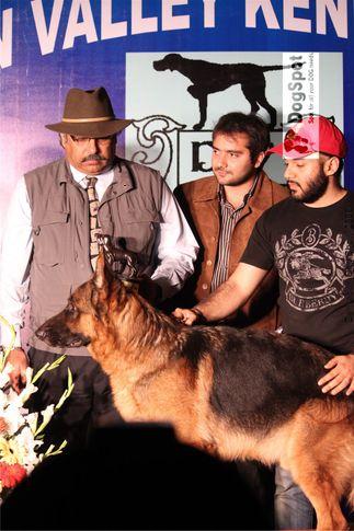 BIS,Line up,Nexx,, Dehradun Dog Show, DogSpot.in