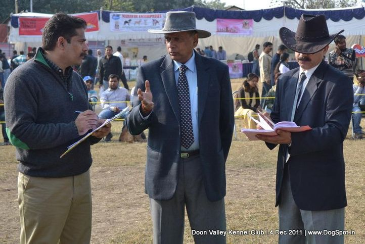 judges,people,ring steward,sw-47,, Dehradun Dog Show, DogSpot.in