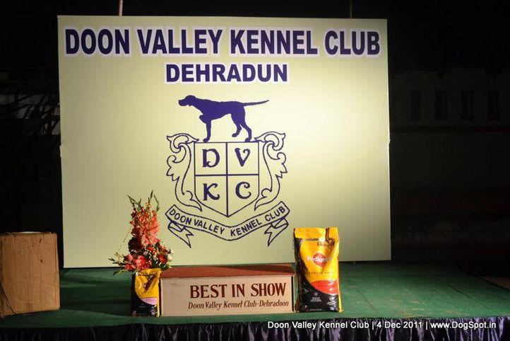 bis,ground,stage,sw-47,, Dehradun Dog Show, DogSpot.in