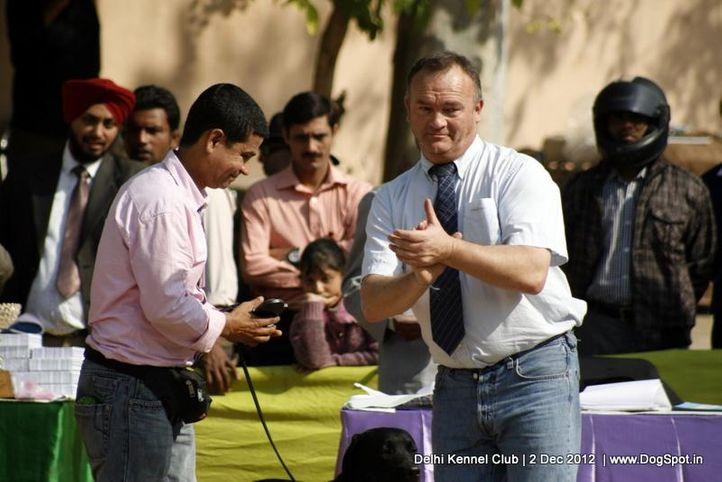 judge,sw-67,, Delhi Dog Show 2012, DogSpot.in