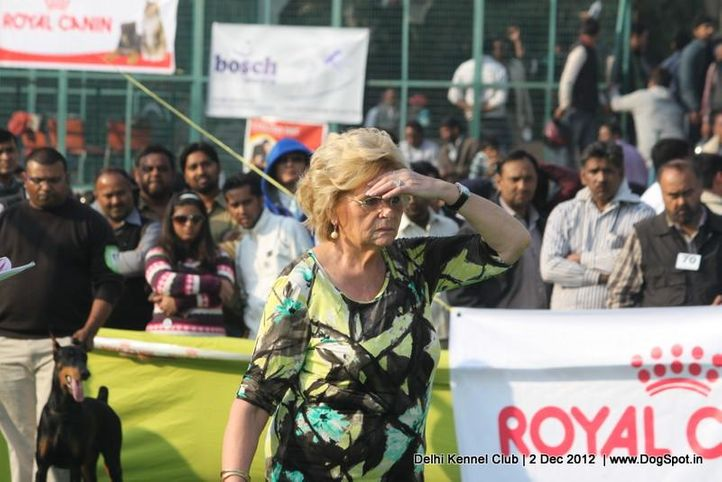 judge,sw-67,, Delhi Dog Show 2012, DogSpot.in
