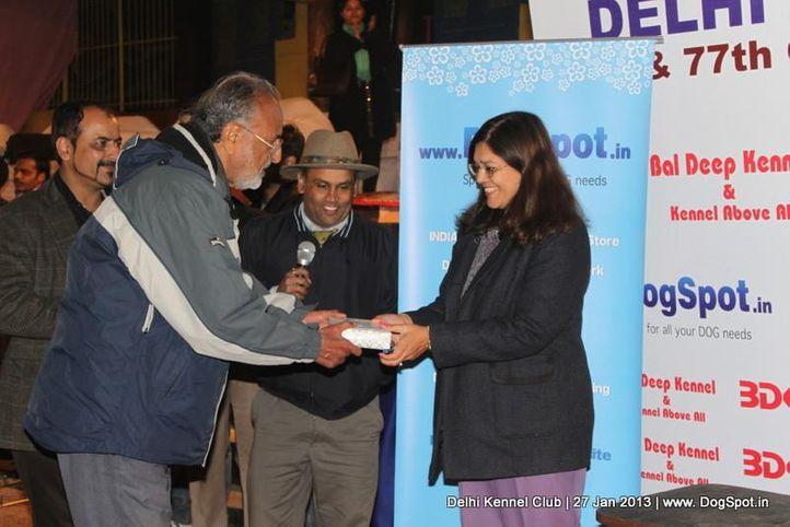 judge,sw-79,, Delhi Dog Show 2013, DogSpot.in