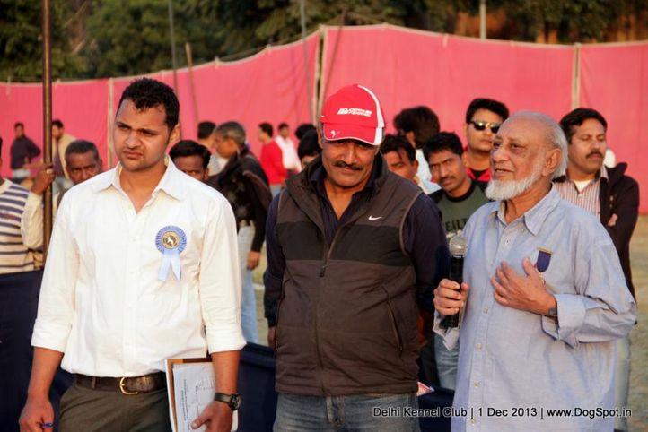judge,people,ring steward,sw-98,waiting ring steward,, Delhi Dog Show 2013, DogSpot.in