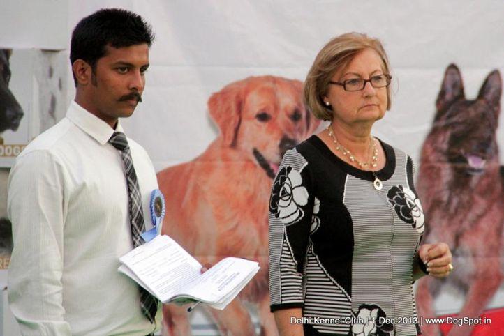 judge,people,sw-98,waiting ring steward,, Delhi Dog Show 2013, DogSpot.in
