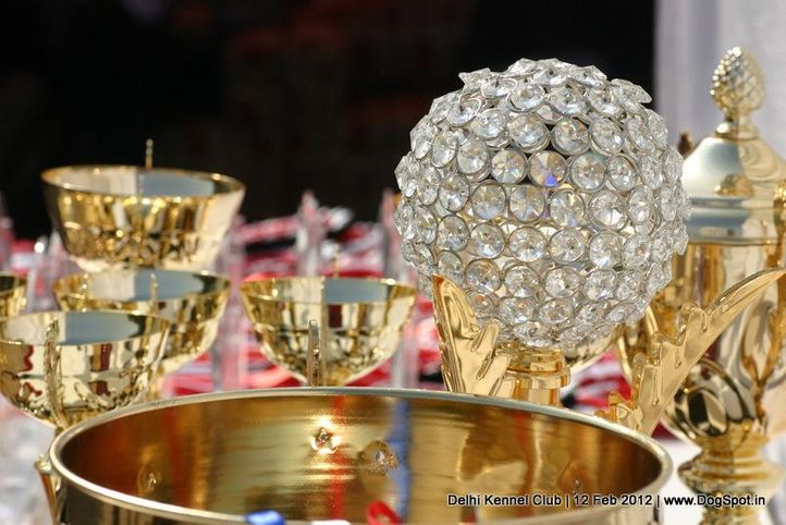 sw-52,trophies,, Delhi Kennel Club 2012, DogSpot.in