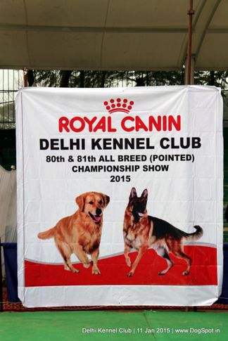 ground,sw-145,trophy,, Delhi Kennel Club , DogSpot.in