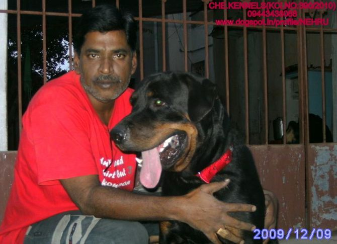, CHE.KENNELS, VELLORE, DogSpot.in