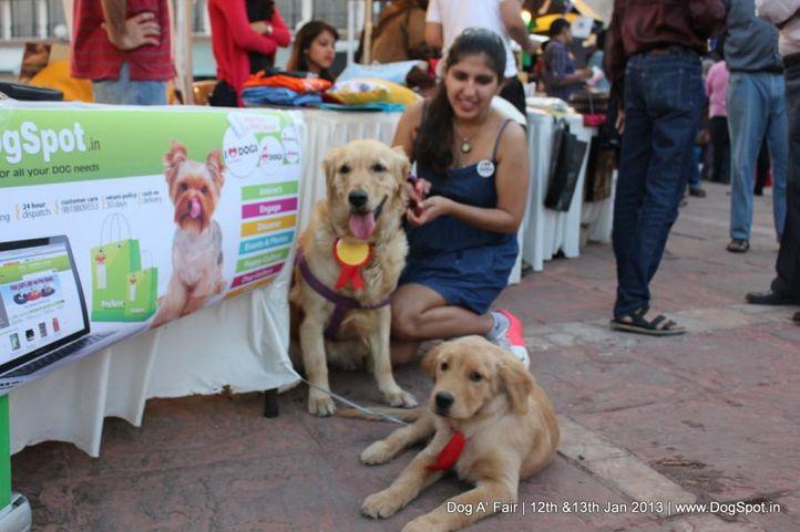 dog a fair jan 2013, Dog A' Fair Jan 2013, DogSpot.in