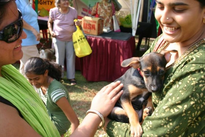 Pets and Owners,, Dog A Fair May 2010, DogSpot.in