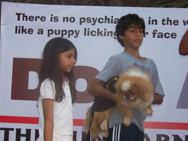 Aryan Khan,Fashion Show,Shah Rukh Khan Kids,Suhana Khan,, Dog A Fair May 2010, DogSpot.in