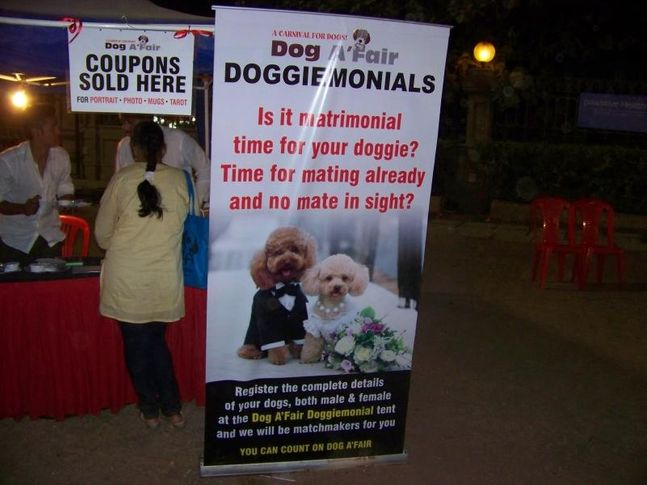 Ground,Matrimonial,, Dog A Fair May 2010, DogSpot.in