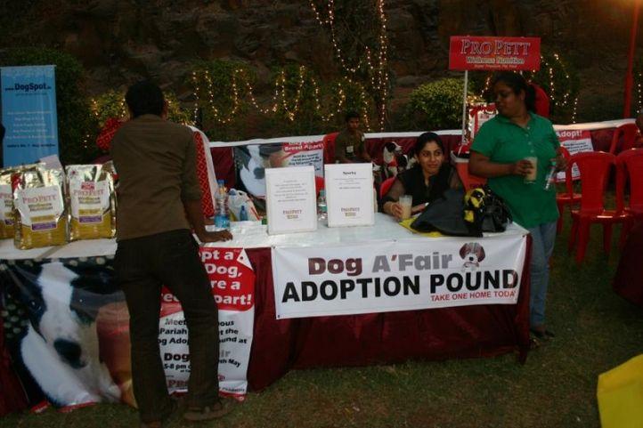 Adoption,Ground,, Dog A Fair May 2010, DogSpot.in
