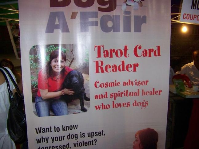 Ground,Tarot Card,, Dog A Fair May 2010, DogSpot.in