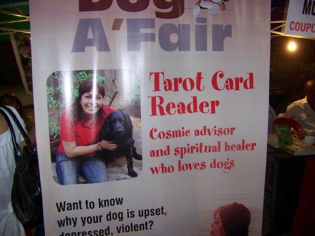 Ground,Tarot Card,, Dog A Fair May 2010, DogSpot.in